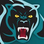 Complete Panthers Coaching App